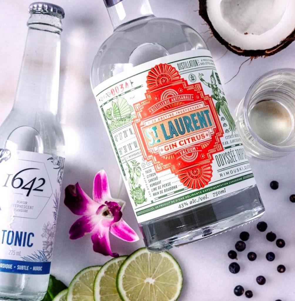 Recette de gin tonic festif