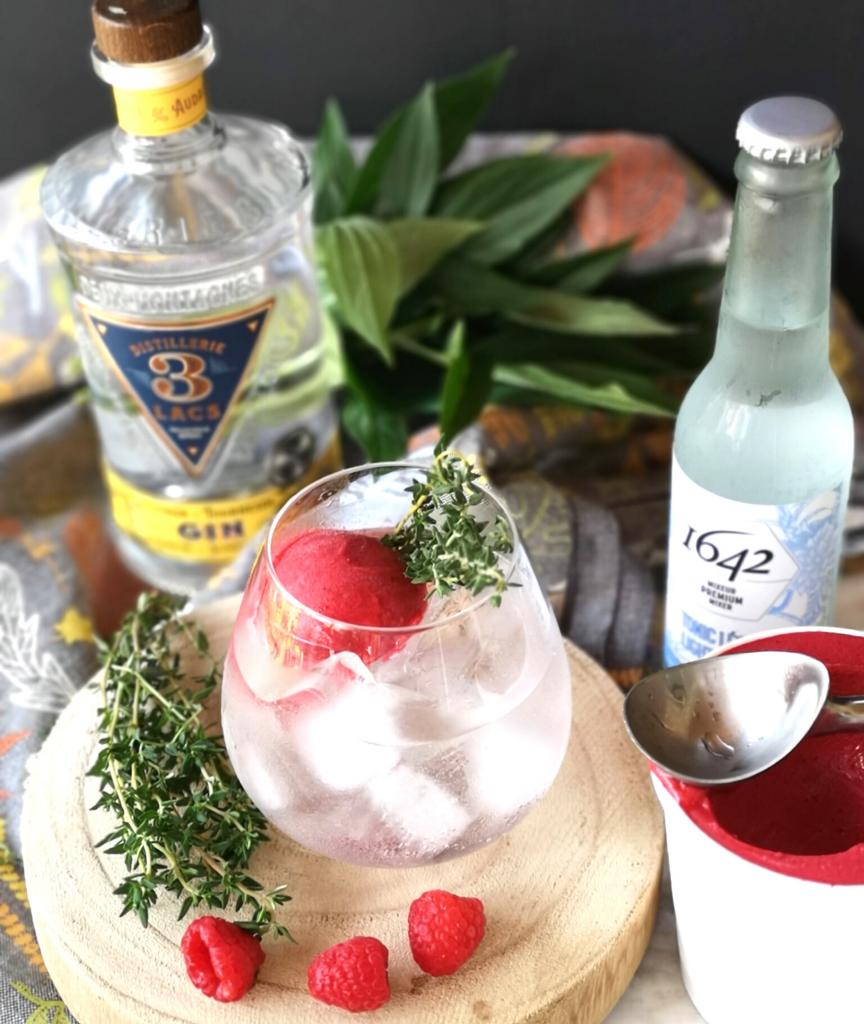 Gin Tonic sorbet framboise